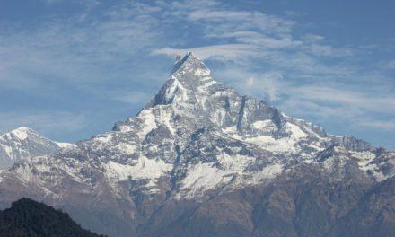 2.23 Ruf des Himalaya